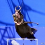 Maleficent - Flying 4